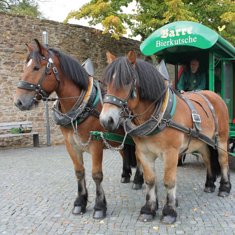 Kutsche mit Pferden